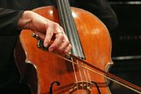 Cello Lesson Auditions