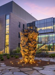 Online Event | New Ecologies: Art Outdoors