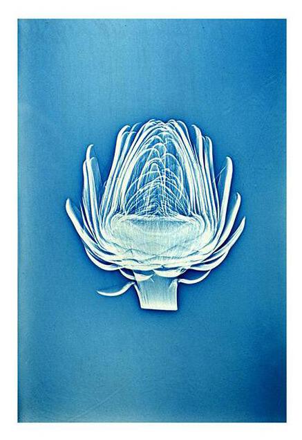 Online Event   Art-Inspired Yoga with Emily Kamen